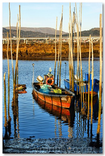 Embarcações em Darque by VRfoto