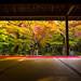 momiji '13 - autumn leaves #9 (Enkou-ji temple, Kyoto) by Marser