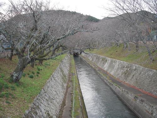 三井寺へ琵琶湖疎水