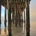 The Barnacles of Avila Pier by RichGreenePhotography.com