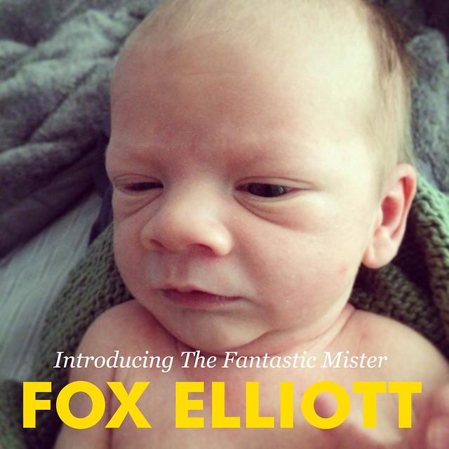 FoxElliott