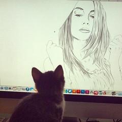 Ellas que se miran. #catslife #catstagram #illustration #wip #worinprogress #ilustración #morphart