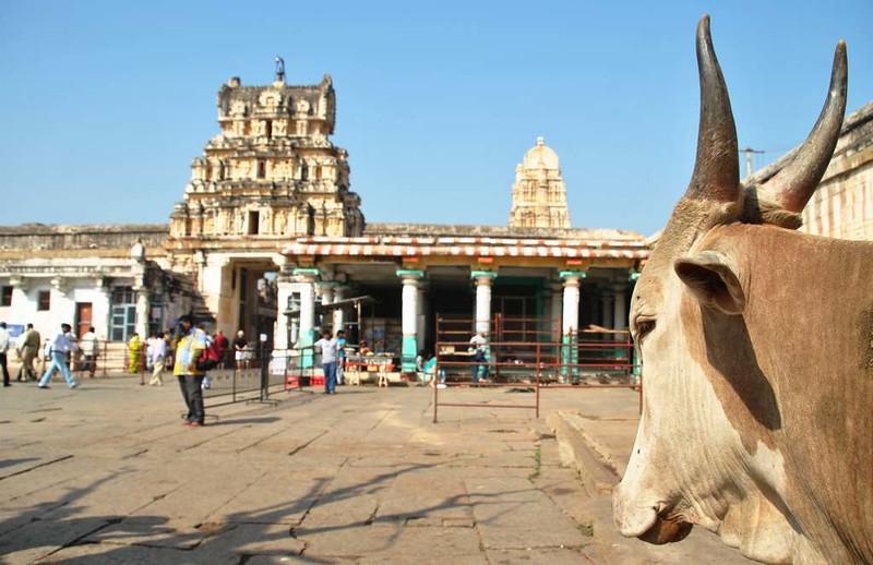 155 c Hampi templos y... (68)