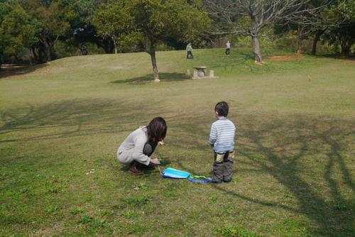 口袋風箏 (5)