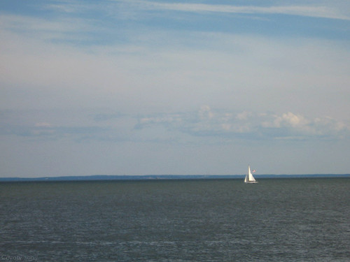 Sailboat and Long Island by Coyoty