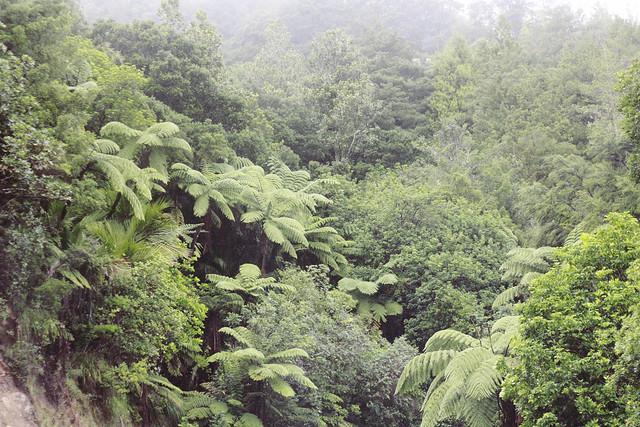 hejregina.blogspot.com grönt1