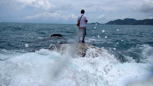 Koh Samui Fishing サムイ島 釣り (4)