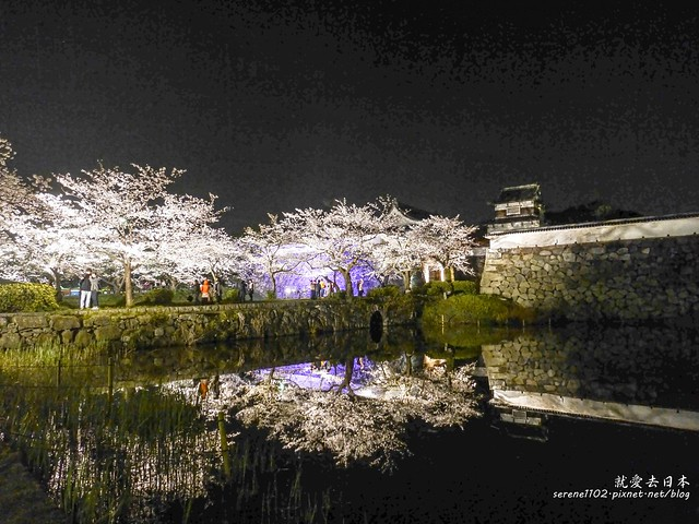 20140327山陽D2熊本-1130398