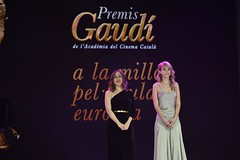 gala VII Premis Gaudí (47)