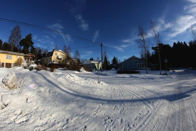 talvi 044