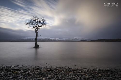 longexposure tree water clouds scotland loch lochlomond millarochybay