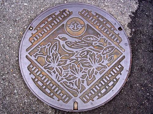 Shimizu Wakayama, manhole cover (和歌山県清水町のマンホール)