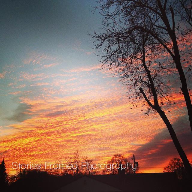 314.365 | brilliant sunset.