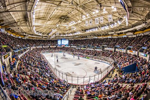 people hockey sport canon landscape gente artistic stadium crowd creative wideangle paisaje fisheye coliseo estadio coliseum multitud stingrays deportes crowded artistico creativo northcharlestoncoliseum canon70d danieldevad danieldelgadophotography