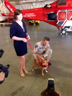 Lucky the Dog Reunites with LAFD Helicopter Rescuers & Receives a Surprise Treat
