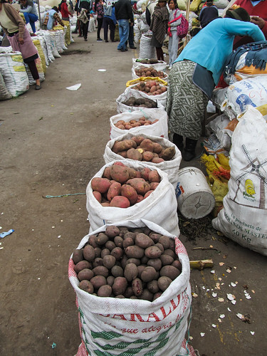 Saquisili: différentes sortes de patates