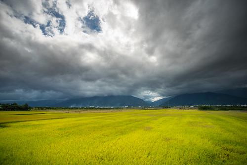 road travel sky cloud canon rice sony taiwan taitung 稻田 池上 sonyalpha chihshang 伯朗大道 chishangtownship mrbrownavenue sonya7r
