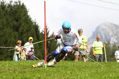 Světový pohár v travním lyžování v Předklášteří nabídne speciální výroční program