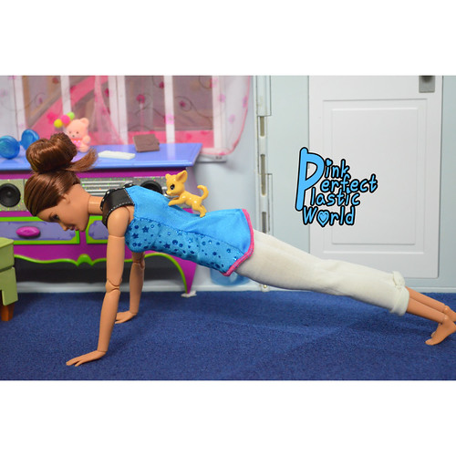 High Plank Pose aka Uttihita Chaturanga Dandasana