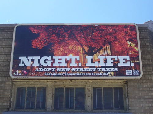 "I don't understand what ""Night. Life"" has to do with the city's tree canopy (DC DDOT billboard)"