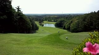 ゴルフラウンド34回目:市原GCは40+45=85。夢の90切り!!!