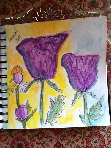 Oriental poppy by momoo50