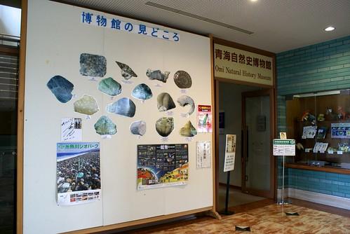青海自然史博物館
