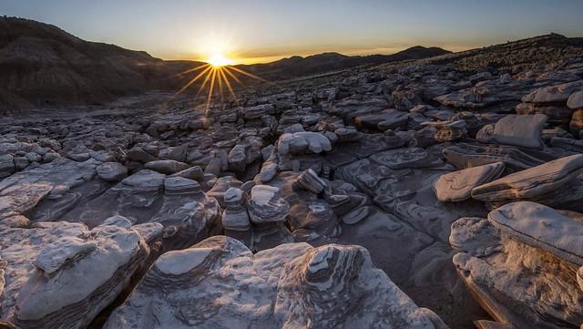Parque nacional del Bosque Petrificado. Arizona. Estados Unidos.