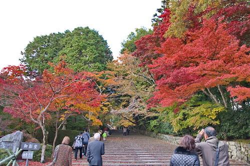 【写真】2012 紅葉 : 光明寺/2020-11-11/IMGP6488