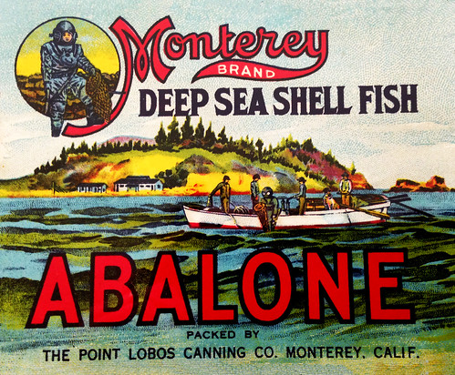 Abalone Can Label, about 1916 by JFGryphon