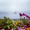 Morning Port Townsend