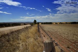 Rural fence line