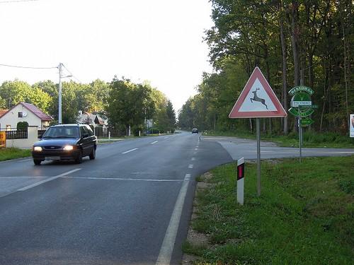 鹿注意の標識