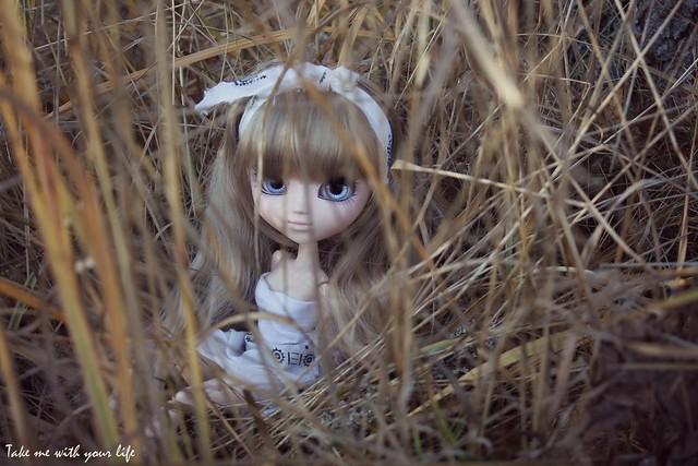 IMG_5071