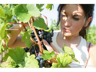 donna-agricoltura