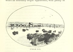 "British Library digitised image from page 429 of ""Through the Kalahari Desert. A narrative of a journey ... to Lake N'Gami and back. ... Illustrations, etc"""