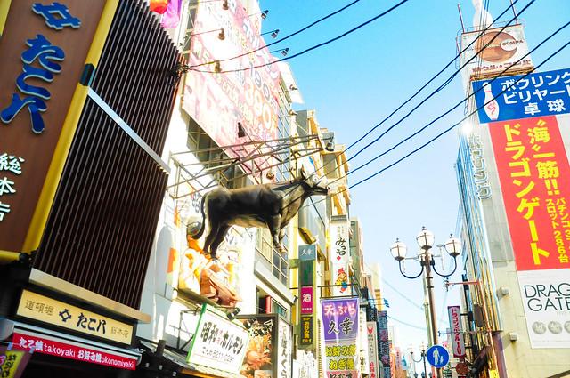 0144-Japan