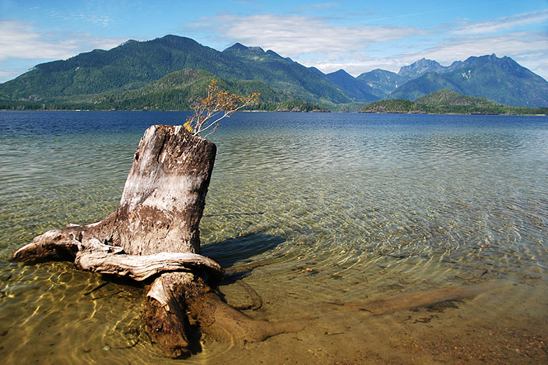 Kennedy Lake alongside Pacific Rim Highway 4, Vancouver Island, British Columbia, Canada