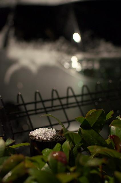 東京雪景色 snow day of Tokyo 2014年2月4日