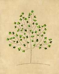Family tree with names art beige brown present day green leaves divorce roots
