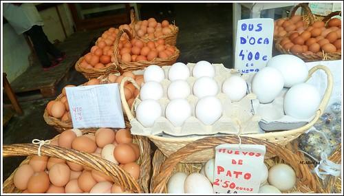 Huevos by Miguel Allué Aguilar