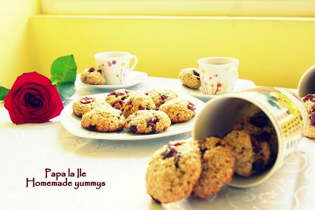 Biscuiți de ovaz cu merișoare... poze (5)