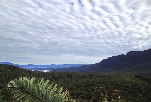 peru peruvianandes abrapatricia peruviancloudforest royalsunangelsite
