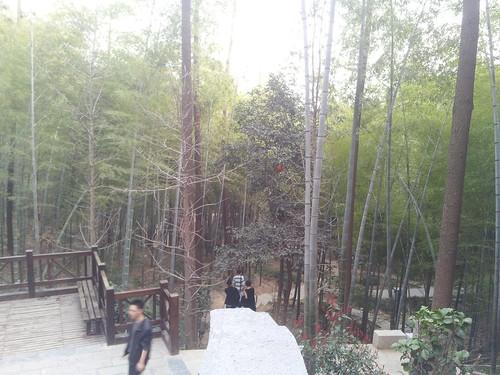 春 游记 宣城 敬亭山ii