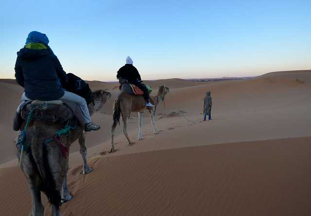 Amanecer en dromedario por el desierto de Marruecos
