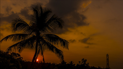 morning sky sun silhouette clouds golden horizon newday