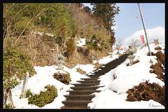 日本京都南丹市_美山雪祭.41