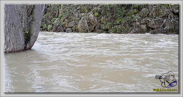 Río Oca a su paso por Briviesca (1)