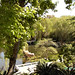 Chinese Garden Sydmey
