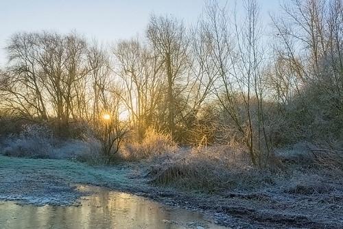 winter light landscape dawn nikon frost worcestershire d610 harvington jactoll nikonfxshowcase
